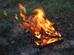 focul de inceput