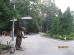 gradina zoologica prin gard