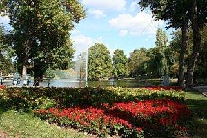 covor colorat in parcul din craiova